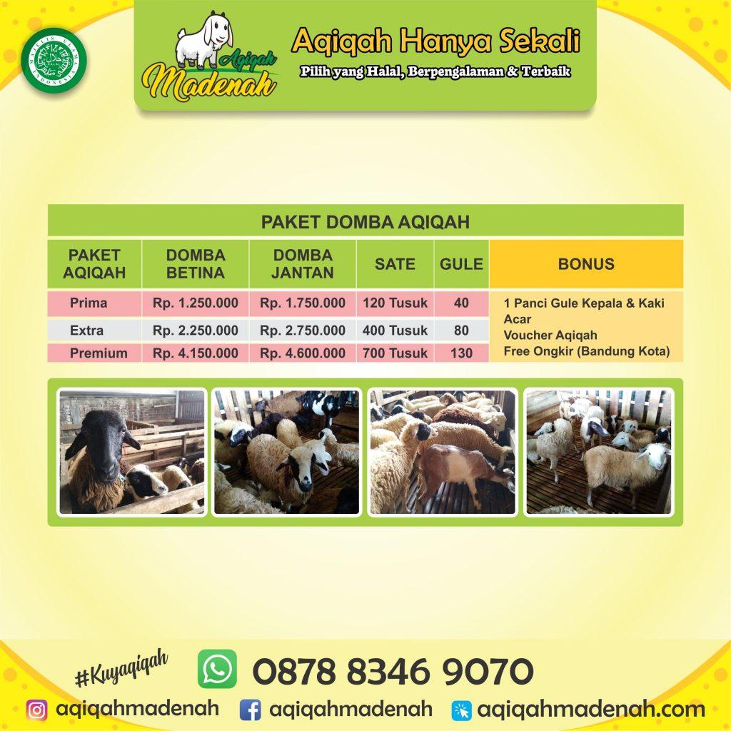 domba Aqiqah Rancaekek Bandung