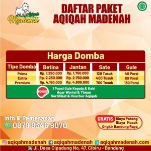 aqiqah madenah
