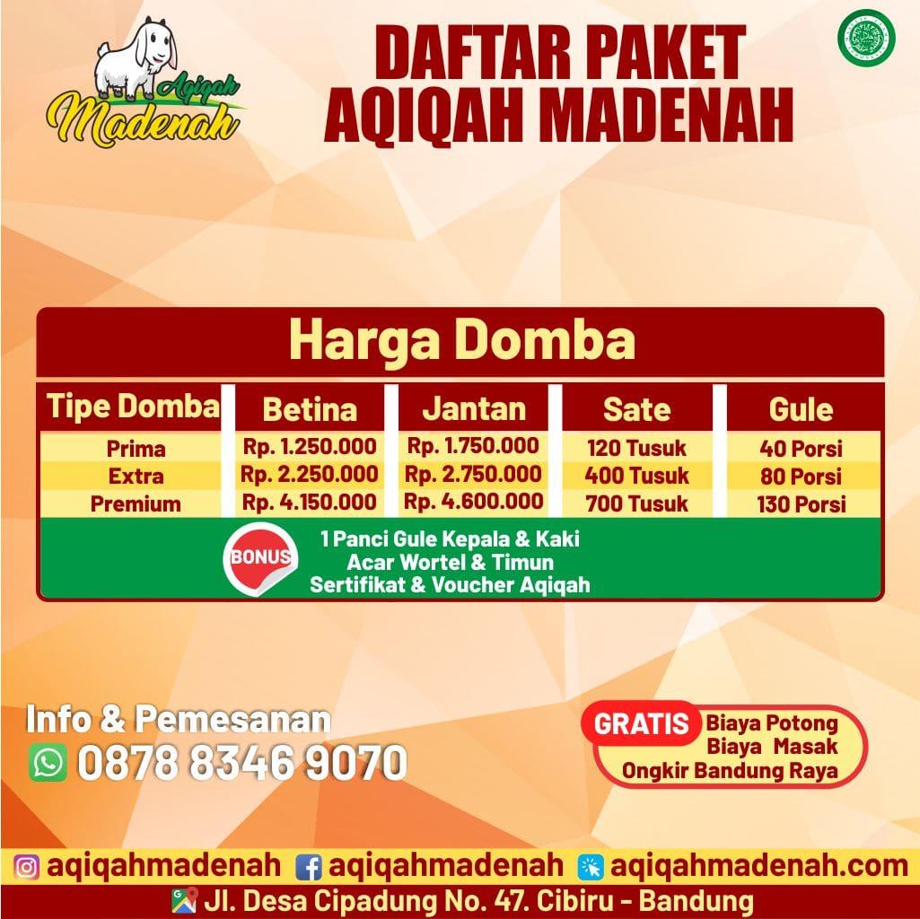 Paket Domba aqiqah madenah