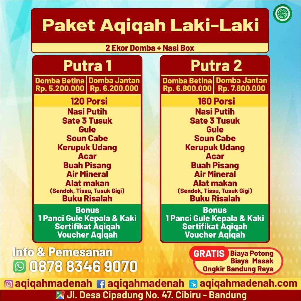 Paket Spesial Laki-Laki Aqiqah Madenah