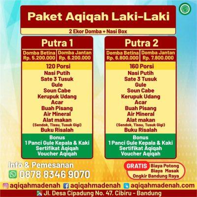 paket aqiqah madenah